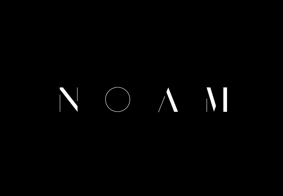 12-Noam-Graphical-House-Logo-BPO